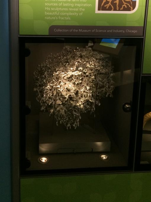 Aluminum Fire Ant Colony Cast #010 - Museum 1 Picture.