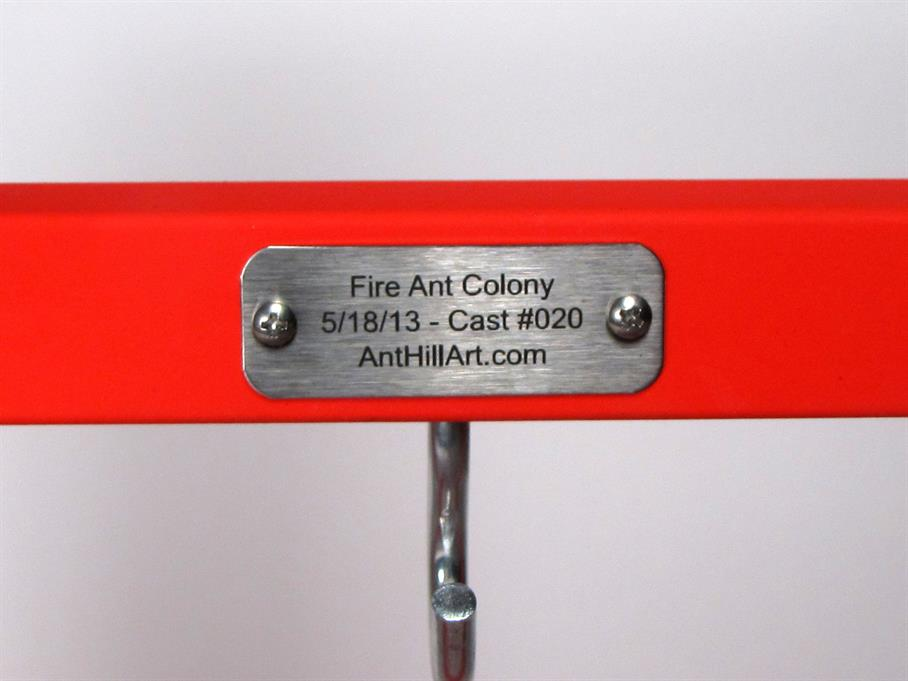 Aluminum Fire Ant Colony Cast #020 - Plaque Picture.