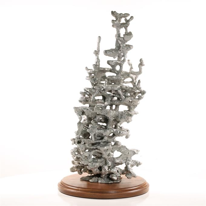 Aluminum Field Ant Colony Cast #023 - Back Picture.
