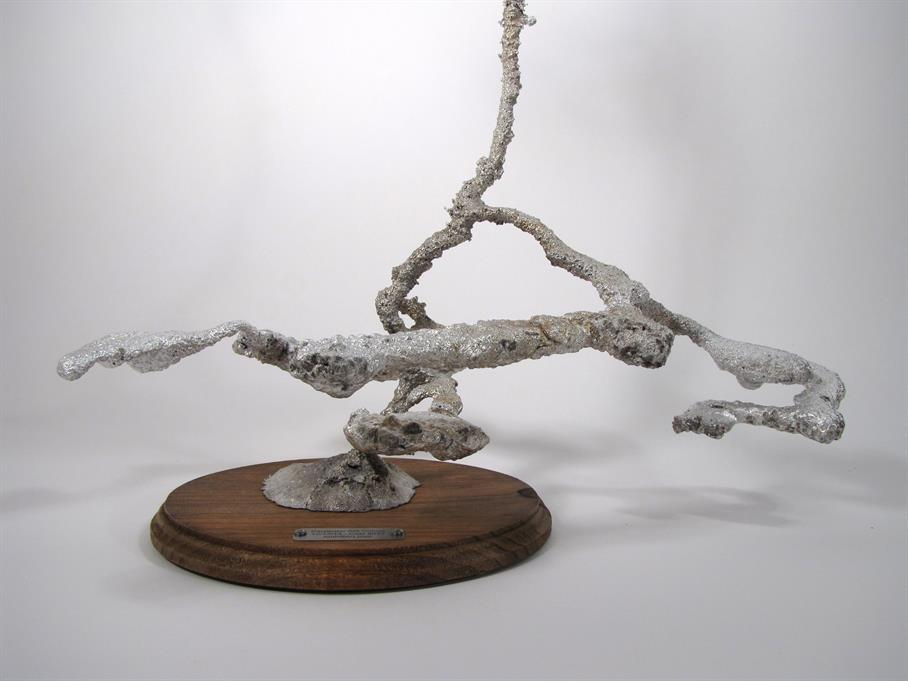 Aluminum Carpenter Ant Colony Cast #042 - Base Front Picture.