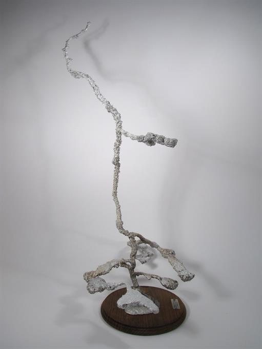 Aluminum Carpenter Ant Colony Cast #042 - Left Picture.
