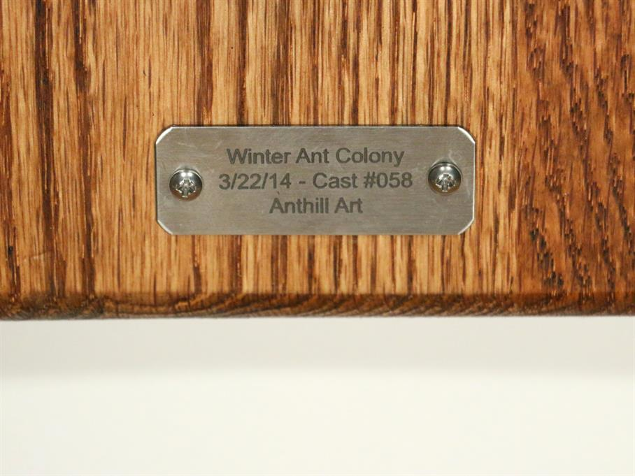 Zinc Winter Ant Colony Cast #058 - Plaque Picture.