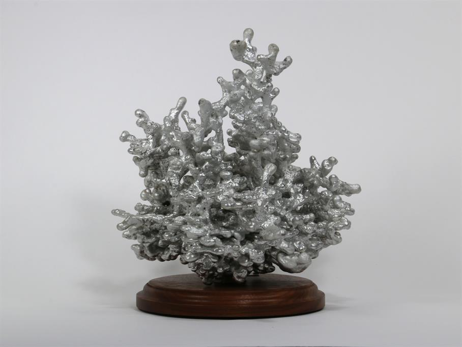 Aluminum Fire Ant Colony Cast #065 - Back Picture.