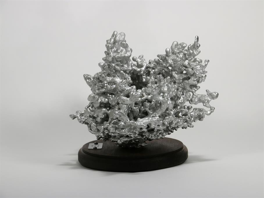 The aluminum fire ant colony cast display from the right