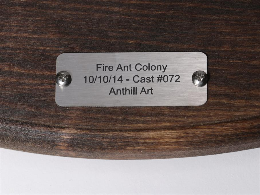 Aluminum Fire Ant Colony Cast #072 - Plaque Picture.