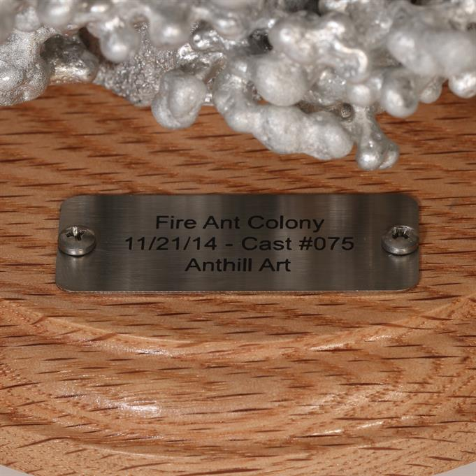 Aluminum Fire Ant Colony Cast #075 - Plaque Picture.