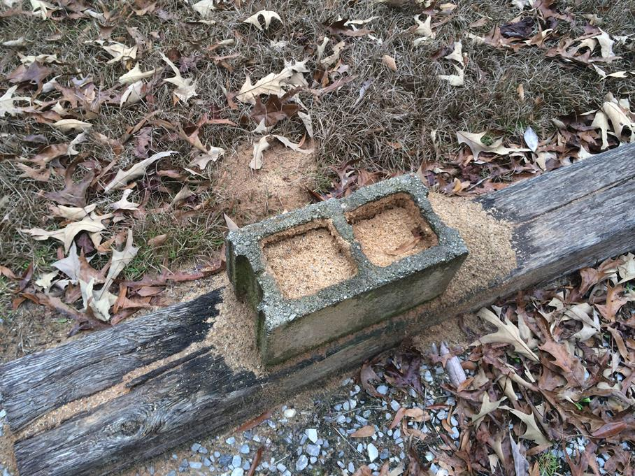 Casual Survey of Three Acres of Land Reveals 120 Fire Ant Colonies - Anthill in a cinder block