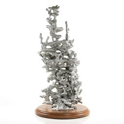 Aluminum Field Ant Colony Cast #023 - Front Picture.