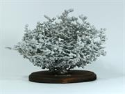 Aluminum Fire Fire Ant Colony Cast #060 - Front Picture.