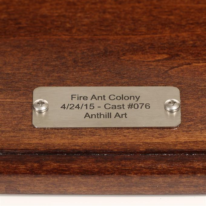 Aluminum Fire Ant Colony Cast #076 - Plaque Picture.